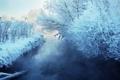 Картинка зима, пейзаж, река, снег