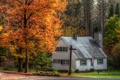 Картинка осень, деревья, город, дом, фото, США, Marshfield