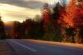 Картинка дорога, деревья, new hampshire, Kancamagus Highway