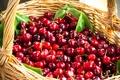 Картинка корзина, фрукты, черешня, fruit, basket, cherries