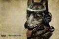 Картинка пес, мозг, Fallout, New Vegas, Rex
