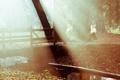 Картинка свет, мост, природа, туман, парк