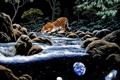 Картинка планета, арт, тигры, реки, William Schimmel
