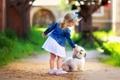 Картинка дорога, собаки, лето, цветы, малыш