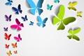 Картинка бабочки, фон, цветные
