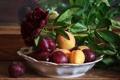 Картинка цветок, отражение, тарелка, подоконник, фрукты, натюрморт, черешня
