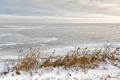 Картинка зима, река, лёд, камыш