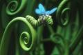 Картинка гусеница, крылья, Reckless Impatience