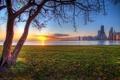 Картинка солнце, закат, дерево, небоскребы, Чикаго, USA, Chicago