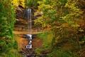 Картинка листья, лес, осень, деревья, водопад