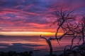 Картинка Beach, pink, Sunset, orange, Coffin Bay
