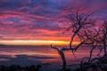 Картинка Beach, pink, Sunset, orange, Coffin Bay
