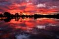 Картинка небо, облака, деревья, озеро, отражение, вечер, зарево