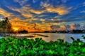 Картинка закат, Флорида, Florida, Jupiter, Dubois Park