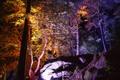 Картинка свет, деревья, ночь, огни, парк, камни