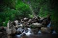 Картинка вода, природа, ручей, камни, водопад
