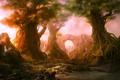 Картинка лес, деревья, закат, корни, река, арка, водопады