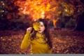 Картинка осень, лист, Vivienne
