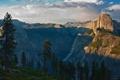 Картинка лес, Национальный парк Йосемити, высота, вид, Yosemite National Park, Калифорния, долина