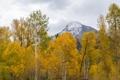 Картинка облака, осень, небо, деревья, гора
