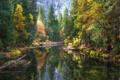 Картинка River, Yosemite National Park, Mirror, Reflection, Merced River, Fall Colors