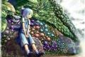 Картинка лето, цветы, аниме, сад, девочка