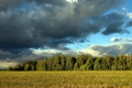 Картинка поле, небо, пейзаж, природа