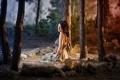 Картинка лес, девушка, свет