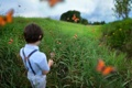 Картинка бабочки, мальчик, юный натуралист, Austin Tott