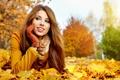 Картинка осень, лес, взгляд, девушка, улыбка, листва, шарф