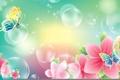 Картинка цветы, коллаж, весна, баблчка