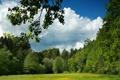 Картинка пейзаж, природа, Германия, Бавария, луг, Leuchtenberg