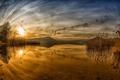 Картинка пейзаж, закат, озеро, камыш
