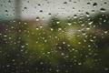 Картинка капли, дождь, природа, макро