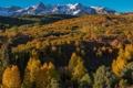 Картинка осень, лес, небо, снег, горы, склон