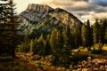 Картинка Jeff R. Clow, гора, деревья, природа, Banff