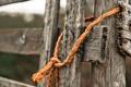 Картинка забор, макро, верёвка