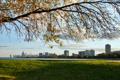 Картинка город, трава, Иллиноис, мичиган, небоскребы, Чикаго, дерево