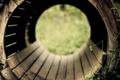 Картинка трава, бочки, настроение, доски, дерево, природа, доска
