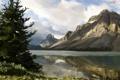 Картинка вода, деревья, горы, природа, озеро, река, ель