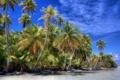 Картинка облака, тропики, небо, океан, пальмы, море