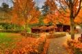 Картинка осень, листья, деревья, парк, Германия, беседка, Заальбургзидлунг