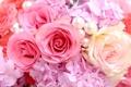 Картинка розы, гортензия, бусинки