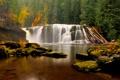 Картинка осень, лес, деревья, камни, водопад, мох, Вашингтон