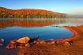Картинка осень, лес, небо, озеро, берег