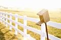 Картинка wallpaper, забор, sun, фон, настроения, скворечник, широкоформатные