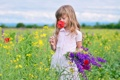 Картинка цветы, луг, девочка