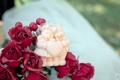 Картинка розы, игрушка, цветы