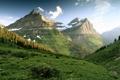 Картинка зелень, горы, склоны, утро, лесок