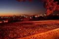 Картинка осень, небо, свет, пейзаж, ночь, природа, город